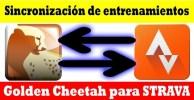 sincronizar strava y golden cheetah