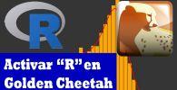 cómo usar R en golden cheetah